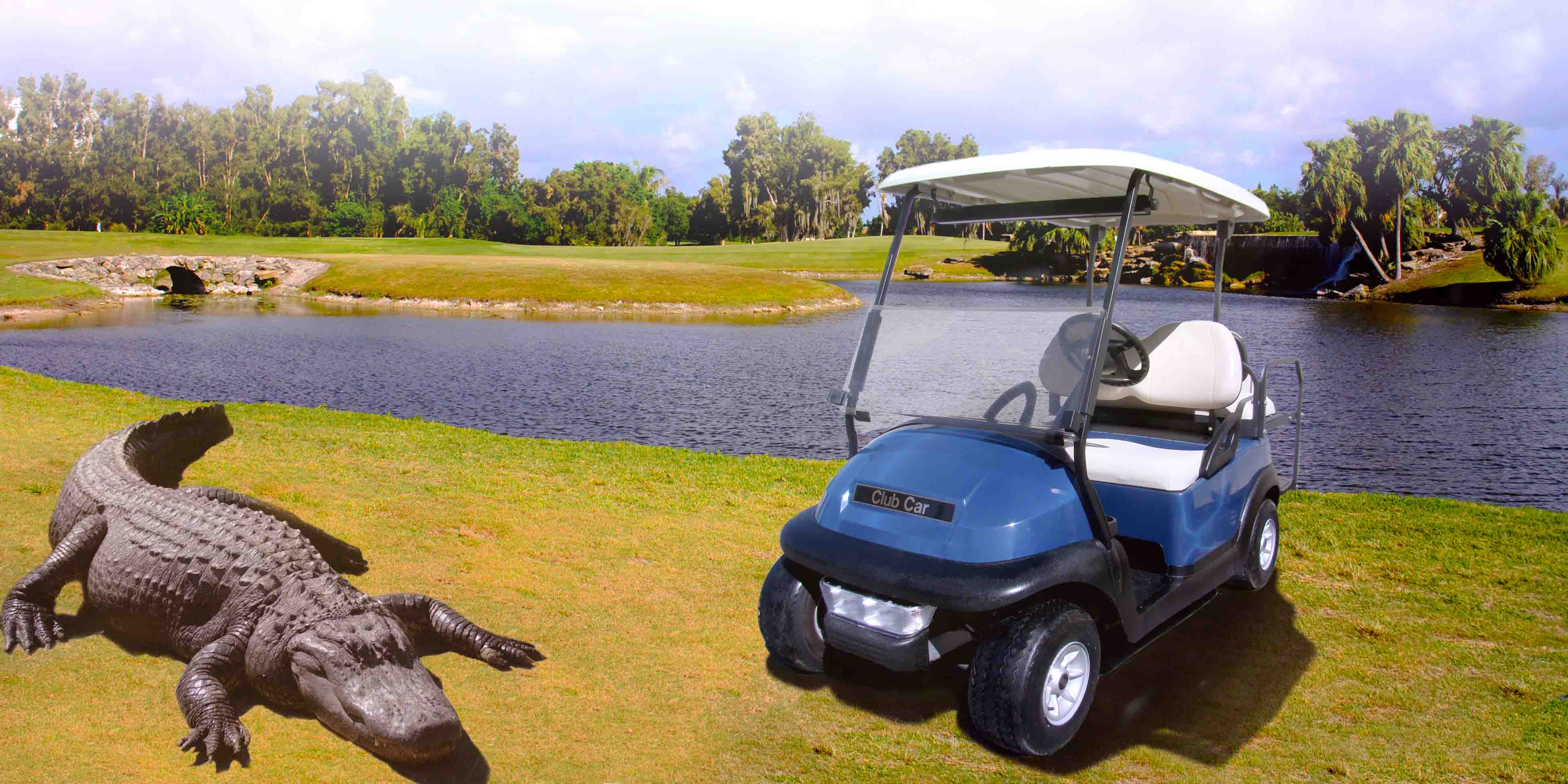 Grass golf carts gators_Web
