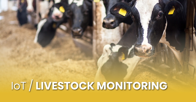 iot-livestock-monitoring_fb