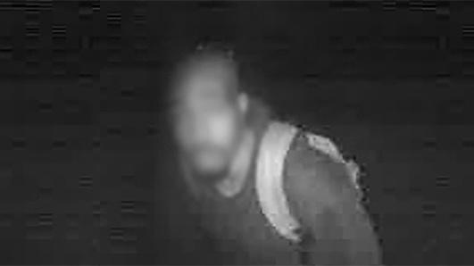 burglar, security camera feed